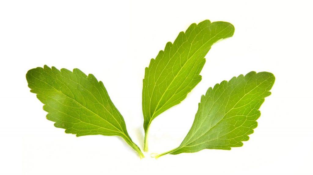 Stevia ist ein Inhaltsstoff von 4NoSugar